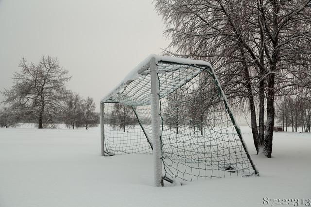 Überprüfe das Forza Fussballtor vorab ob es wetterfest ist, es gibt solche und solche.